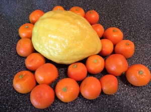 etrog & calamondin